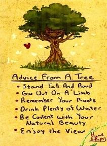 2016 Arbor Day Celebration